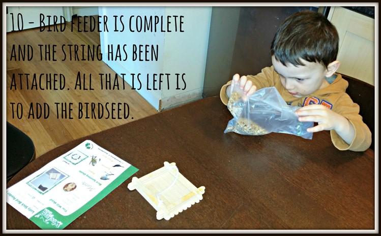 Weekend Box - Bird Feeder Activity - Bird seed
