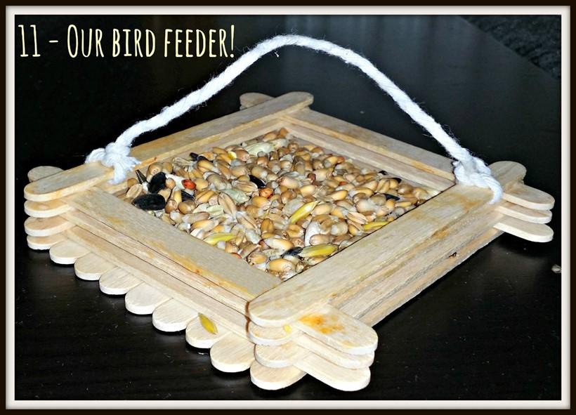Weekend Box - Bird Feeder Activity