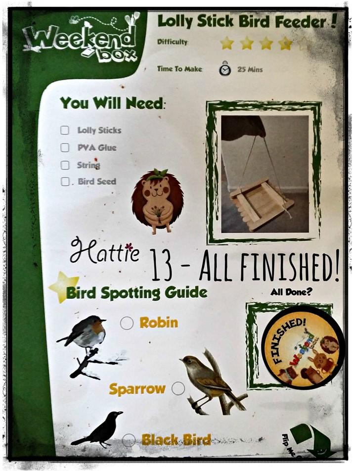 Weekend Box - Bird Feeder Activity - Complete