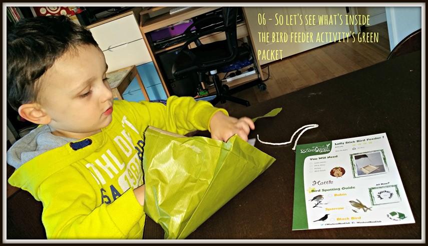 Weekend Box - Bird Feeder Activity - Green Packet