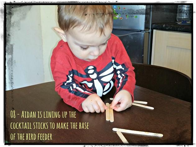 Weekend Box - Bird Feeder Activity - Lollipop sticks